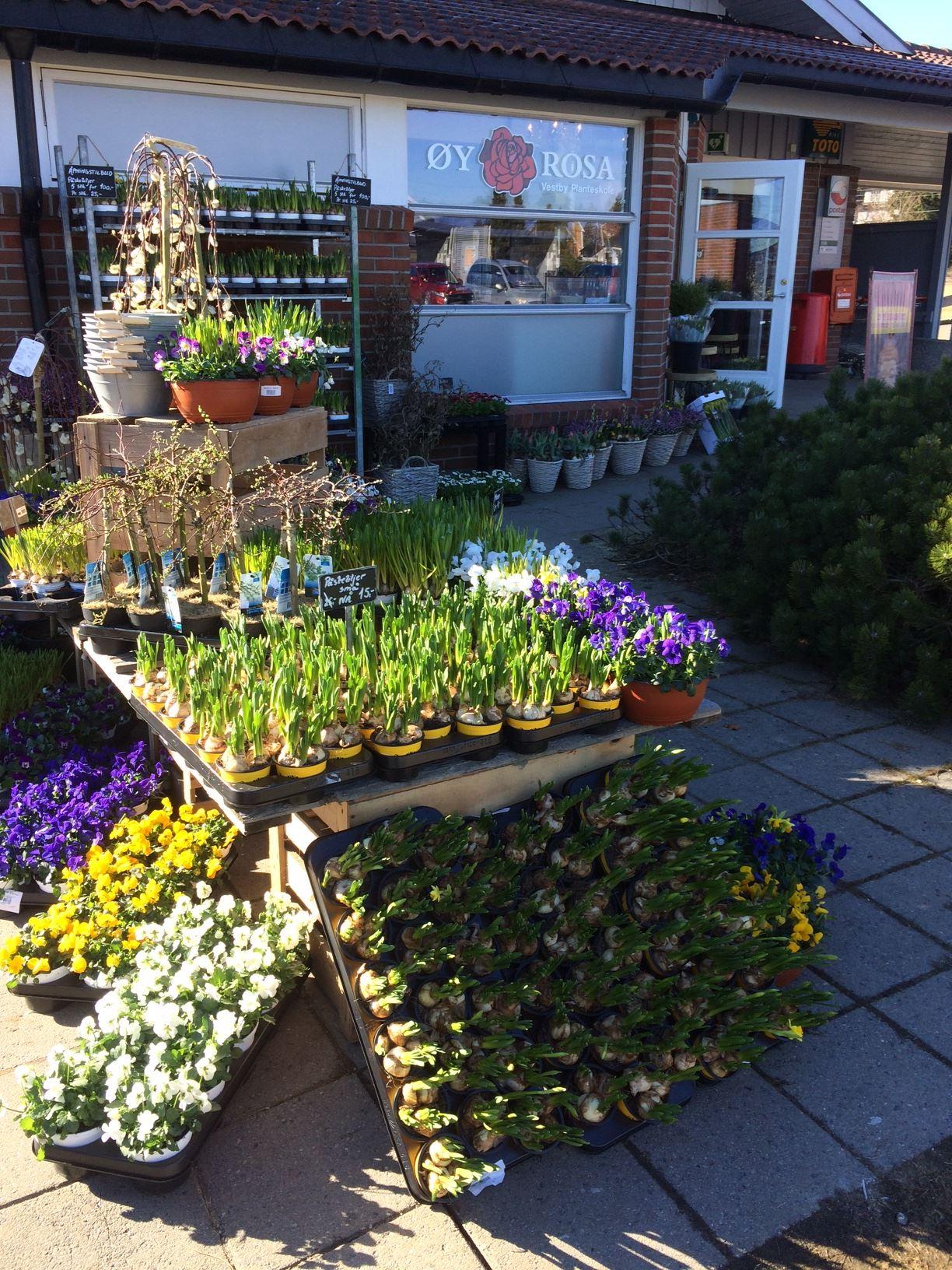 Øyrosa Blomsterbutikk Sarpsborg